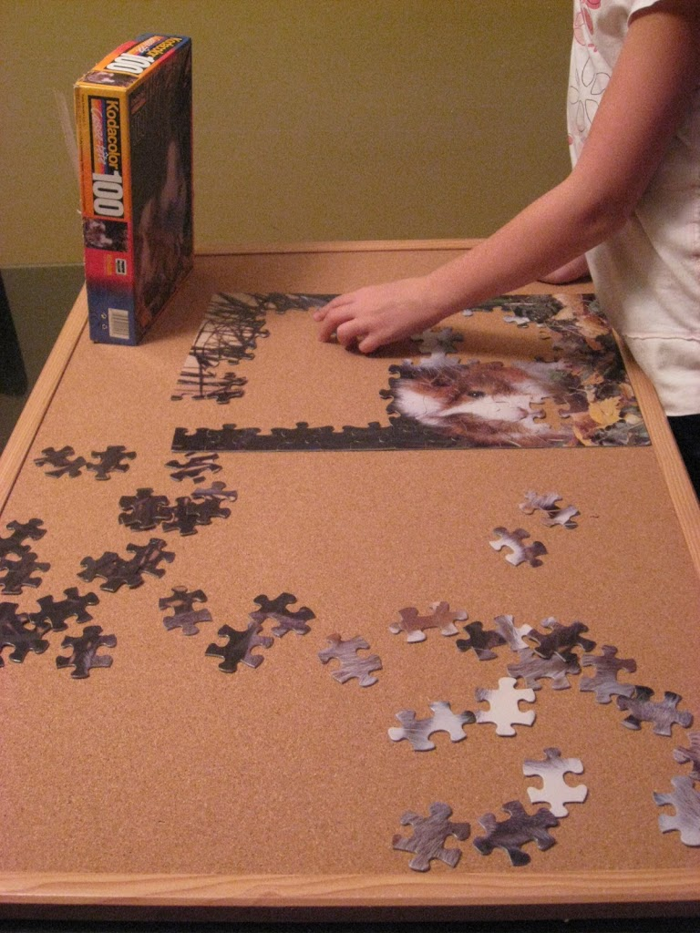 Making Puzzles Portable