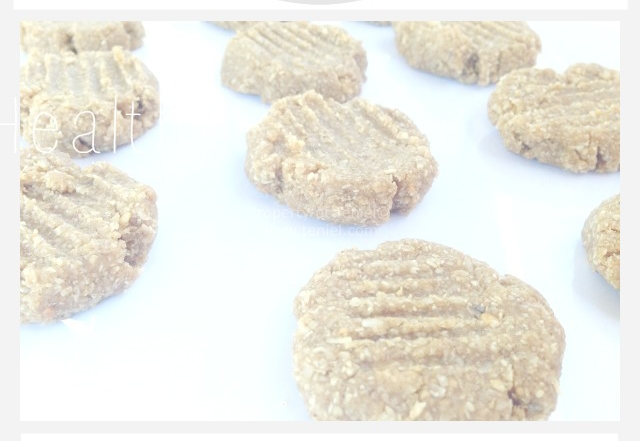 Sugar Free No Bake Peanut Butter Cookies