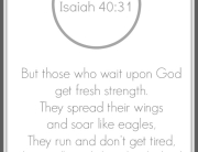 ISAIAH -41-30