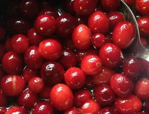 Cranberry-Sauce-Slider