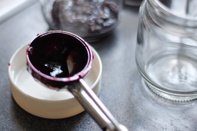 Scoop for Blueberry Compote